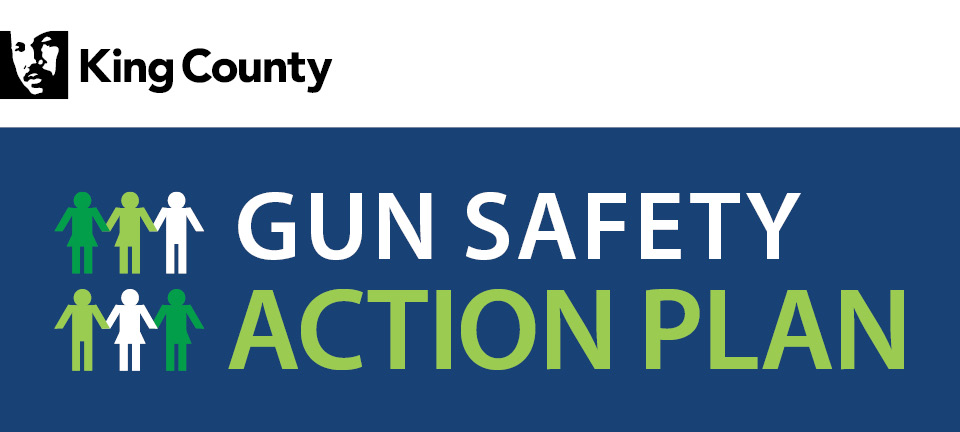 King County Gun Safety Action Plan