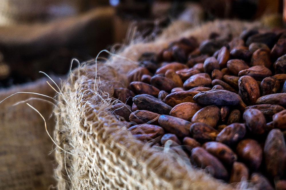 Cacao health benifits.jpg