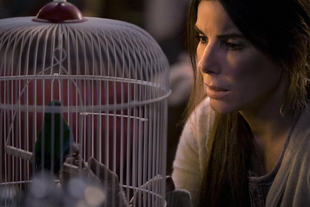 "Sandra Bullock in ""Bird Box."" (Photo courtesy Netflix/Merrick Morton)"