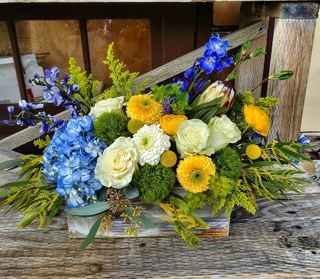 A blue and yellow garden box from today.  #flowers #flowers #floral #florals #flowerlovers #flowerlove #blooms #instablooms #flowersofinstagram #flowerarrangement #floralarrangement #flowerstagram #instaflowers #beautiful #florist #lagunabeach #flower_daily #floraldesign #flowerdesign #blue #yellow #beautiful