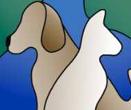 Dove Creek Animal Hospital Employee Manual
