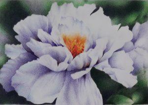 Watercolour flower.jpg