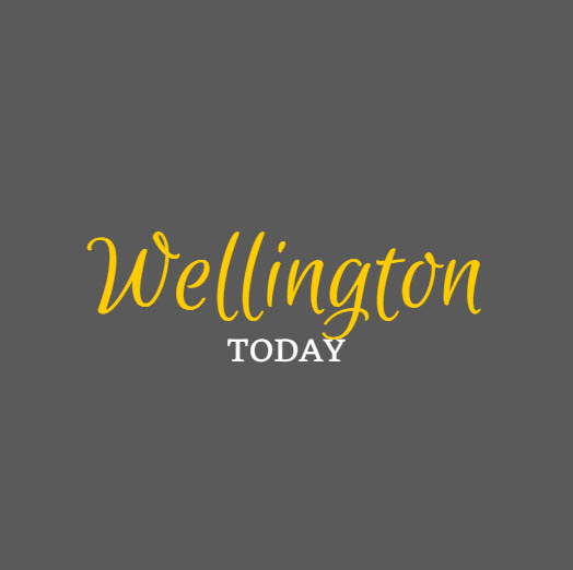 WTN Today Logo 1.jpg