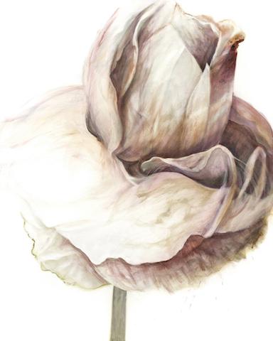 #9 Je suis une rose blanc en honneur de Sophie 2015