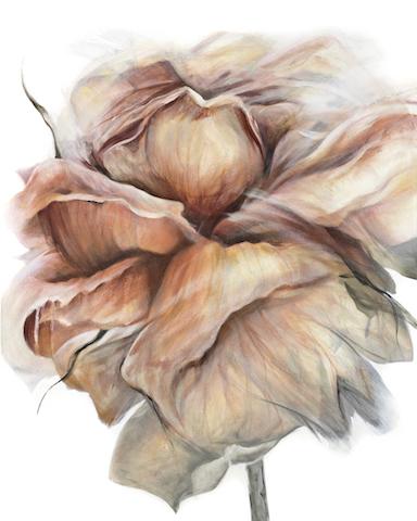 #1 Je suis une douzaine de roses 2014