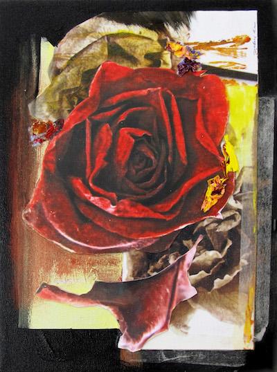 "Rosa Dividido #1   2018  12 "" x 9""  Mixed media: photo print transfers, acrylic paint, and acrylic paint skins on canvas   $100"