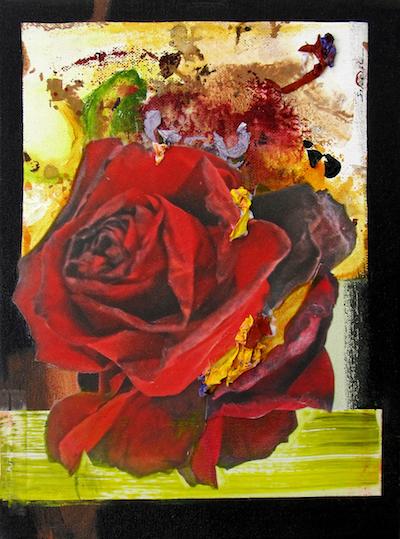 "Rosa Dividido #3    2018  12 "" x 9""  Mixed media: photo print transfers, acrylic paint, and acrylic paint skins on canvas   $100"