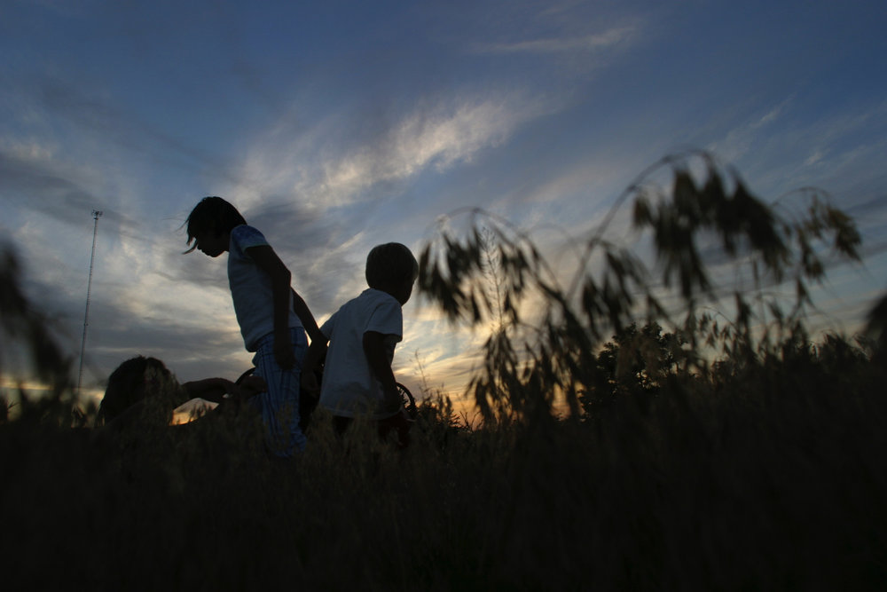 Austin Horn, 6, and his cousin London Busby , 9,  look for grasshoppers in the timothy grass on an Oklahoma summer evening in Weatherford.