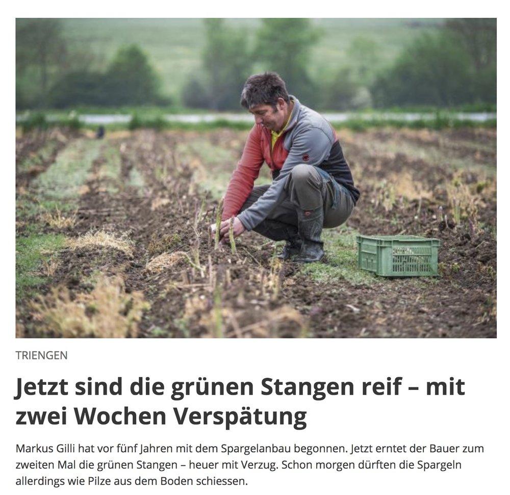 Bericht in der Luzerner Zeitung vom 4.5.2018