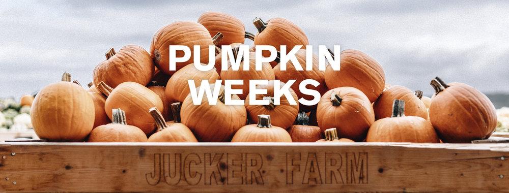 Jeden Tag Kürbismarkt, Sonntags Kürbisschnitzen - Vom 07. - 31. Oktober 2018 finden wiedet unser Pumpkin weeks statt. Mit Kürbisse vom Feld des Spargelhofes Jucker Farm.