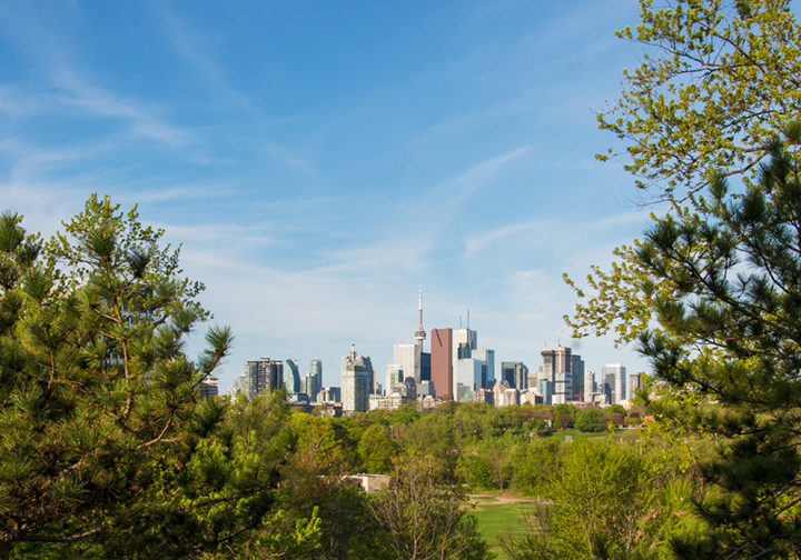 Active-Tour-Guided-Toronto-Park.jpg