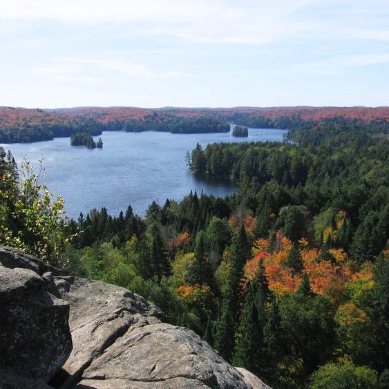 Algonquin_Cache_Lake_Lookout (1).jpg