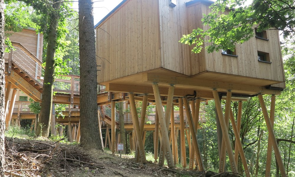 Stelzenläufer: Die Baumhäuser In Panarbora