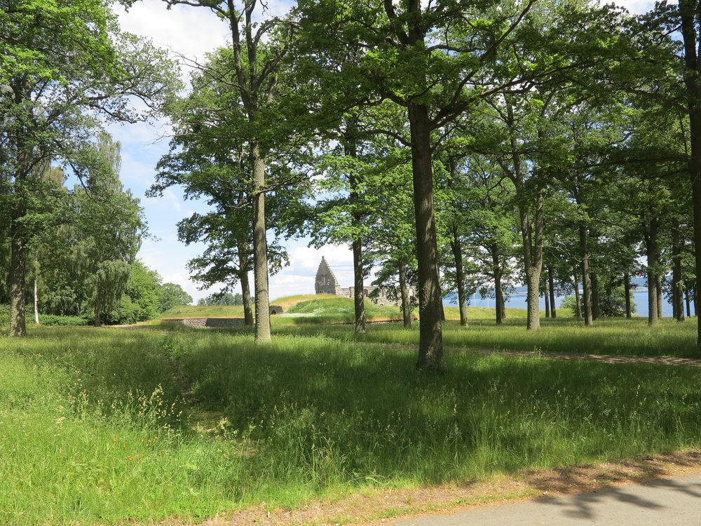 Der Blick durch den Wald auf die Ruine von Visingsborg Slott
