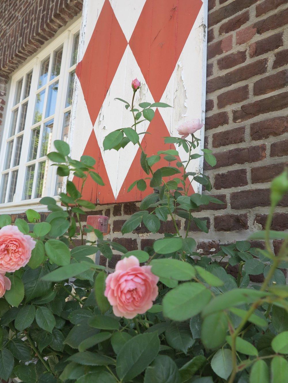 Rosen am alten Gemäuer