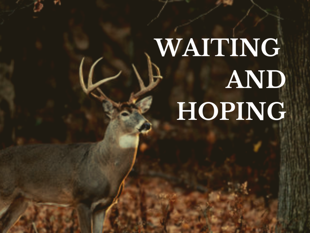 Waiting and Hoping.png