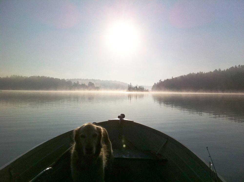 Rosie in boat.JPG