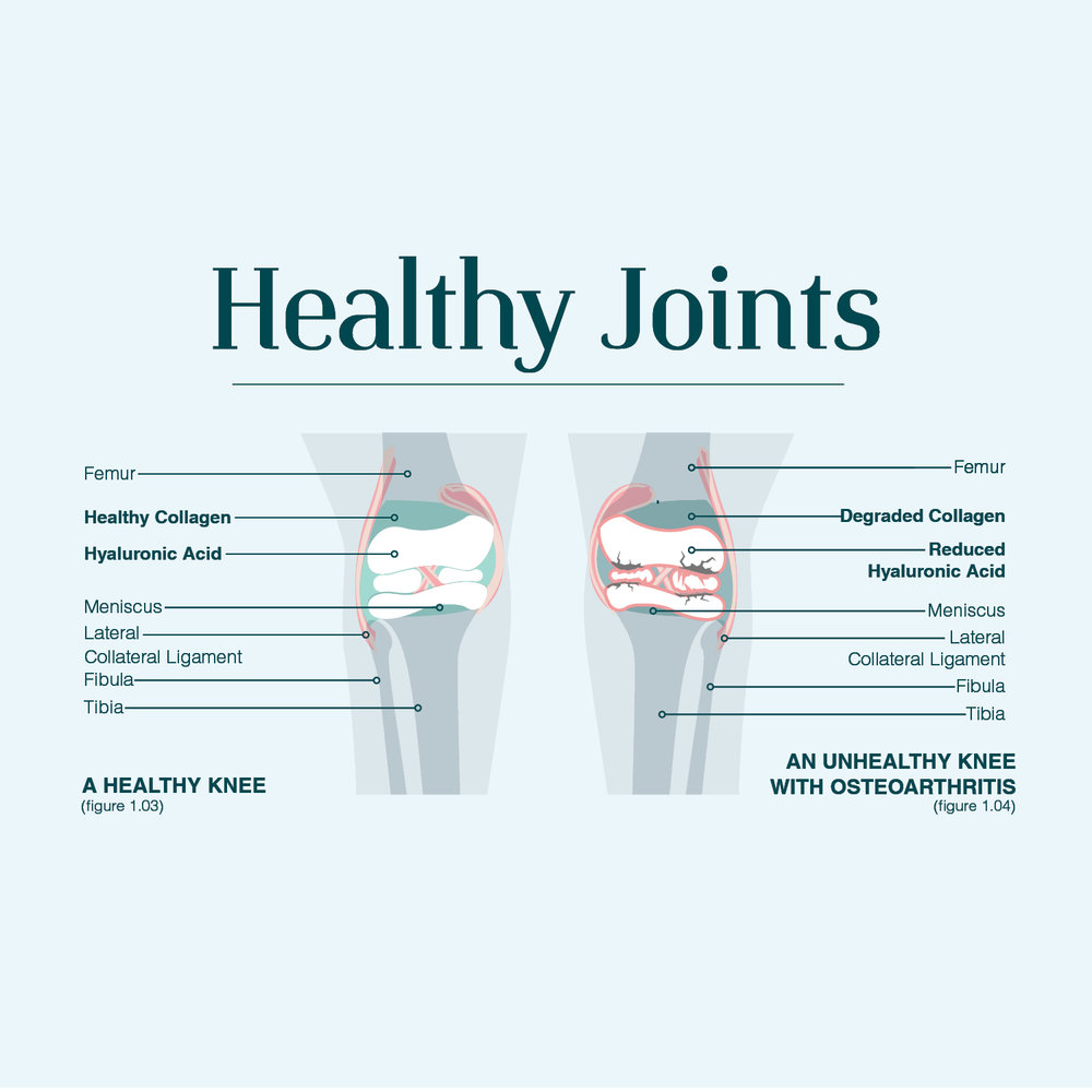 HEALTHY JOINTS square.jpg