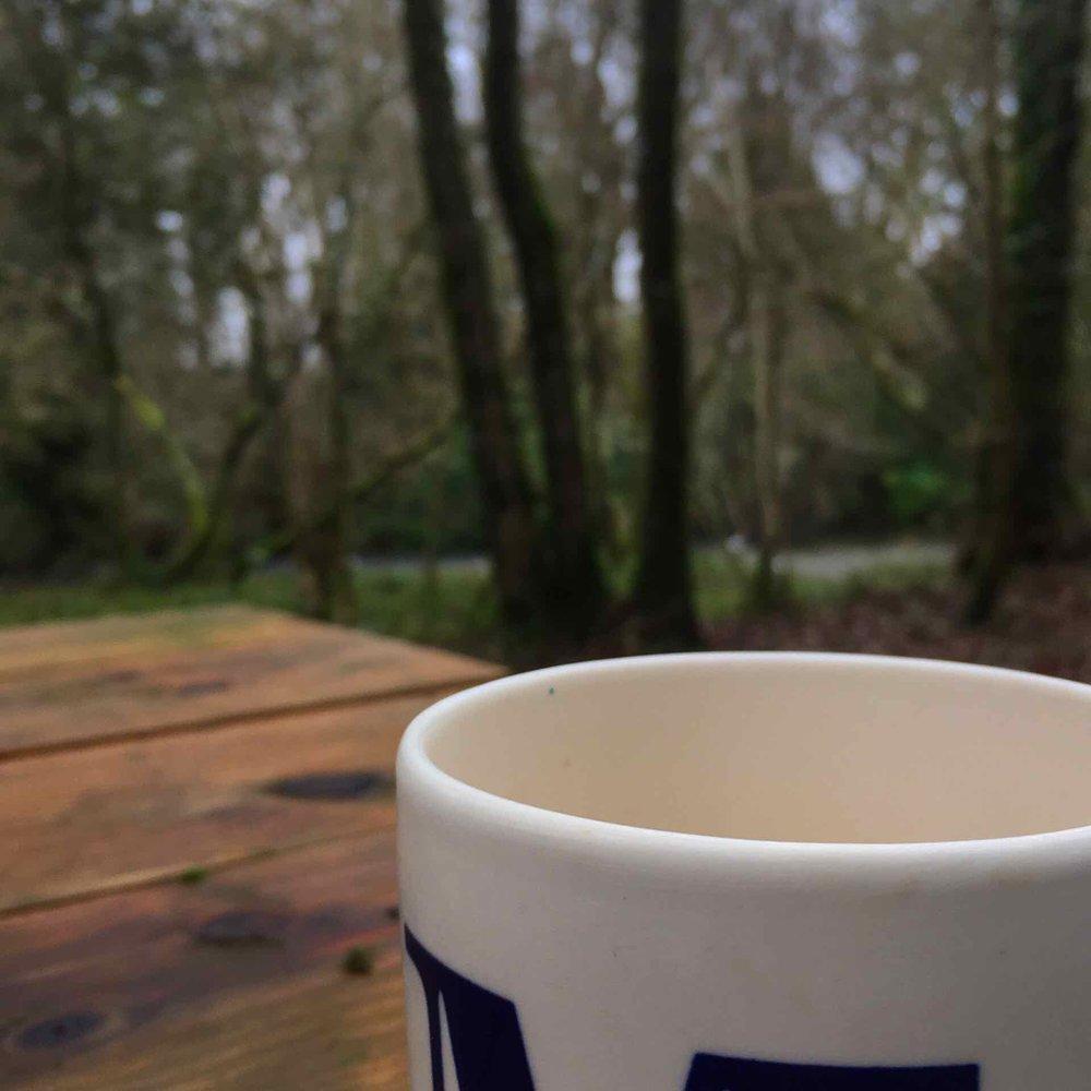 Tea in the woods
