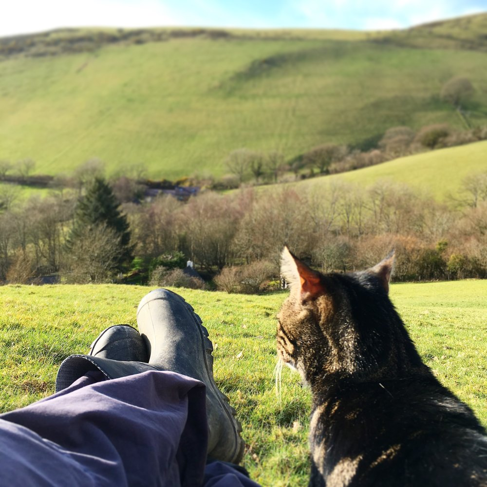 Resting on a walk with Buster