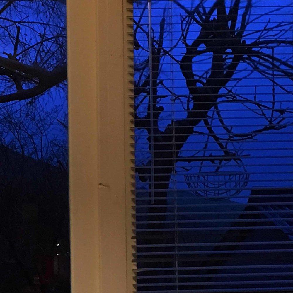 Dark morning view from my studio
