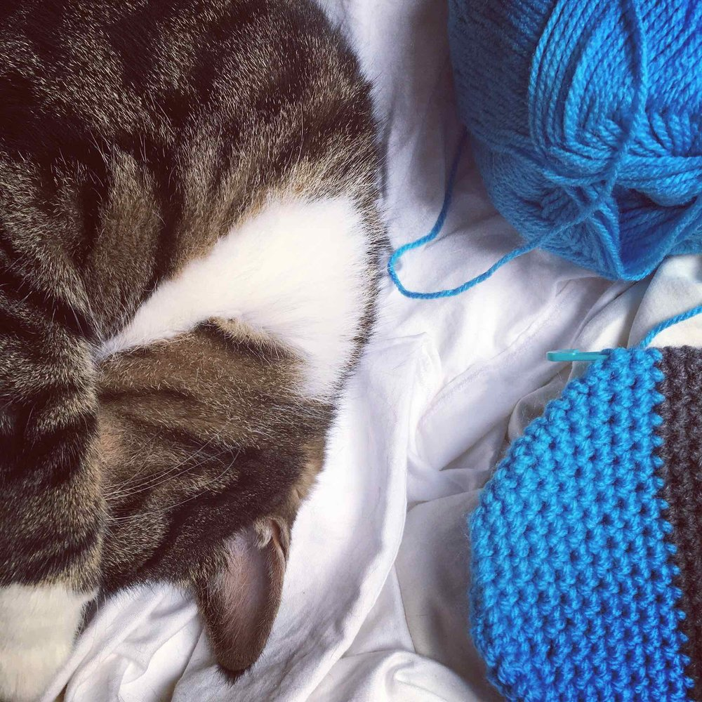 Crocheting with Bailey