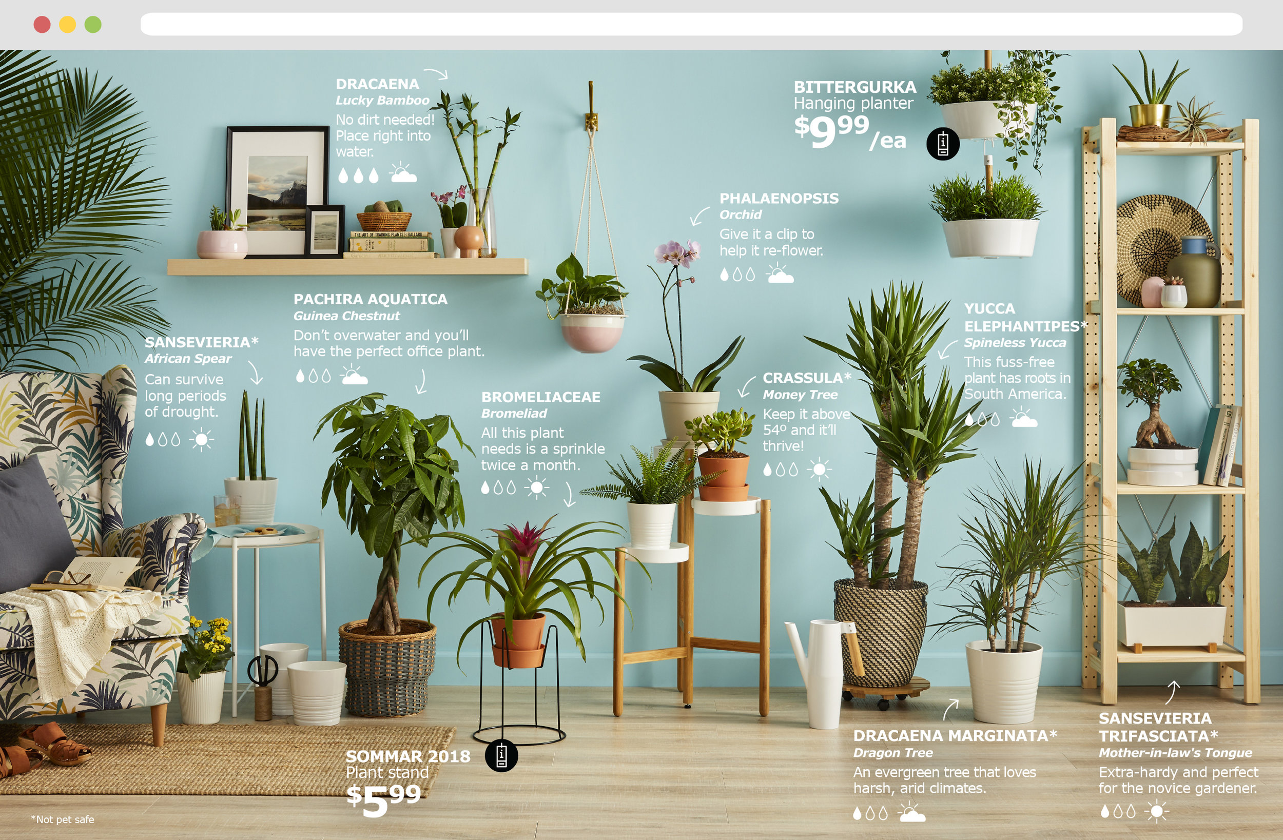 IKEA Plant Guide — Brittany Slopey