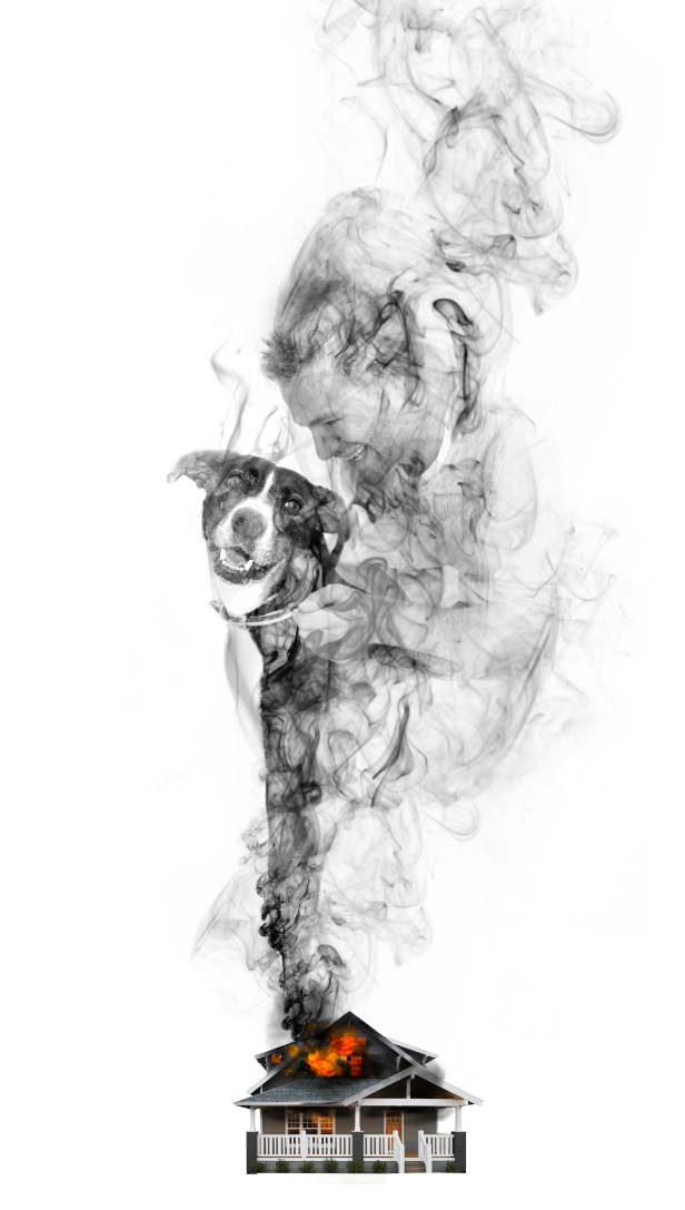 fema-smoke-dog.png