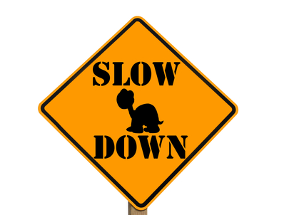 slow sign with turtle silhouette