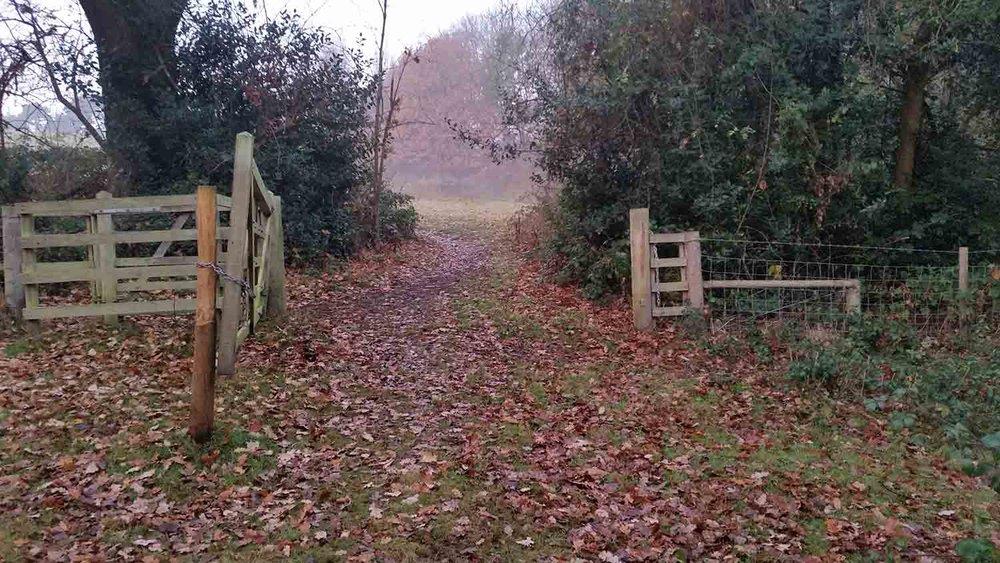Gate in Bottom Mead