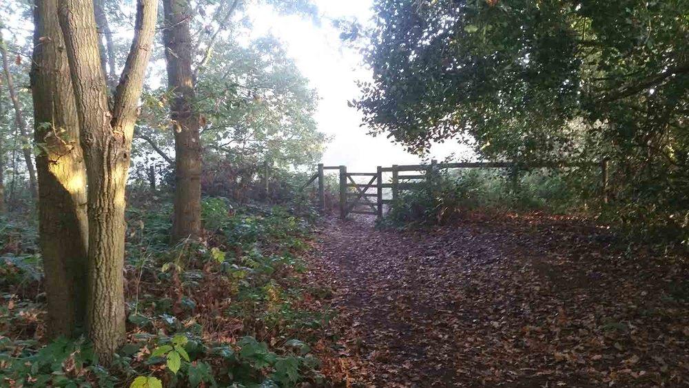 Kissing gate, Greens