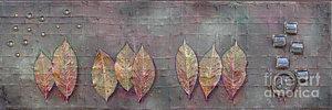 changing-leaves-phyllis-howard.jpg