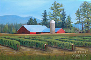 raspberry-fields-forever-phyllis-howard.jpg
