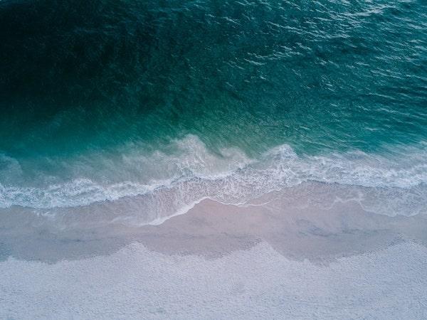 RODDENBERRY-beach-daylight-foam-min.jpg