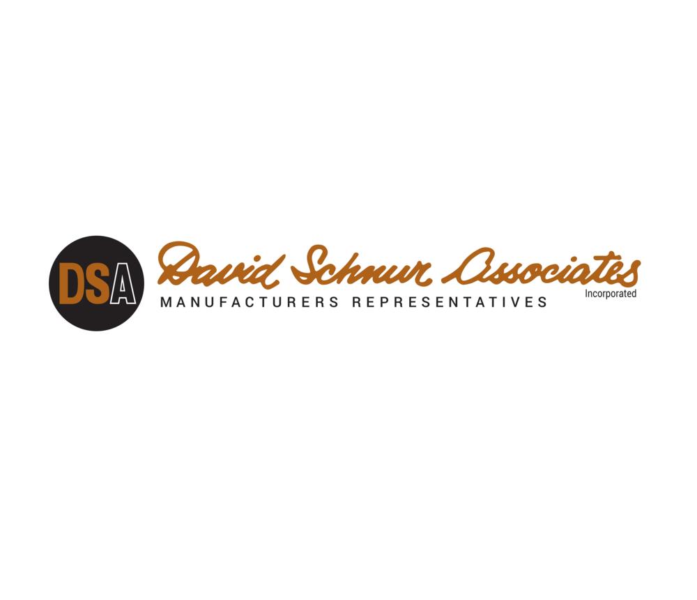 DSA Logo Design.png