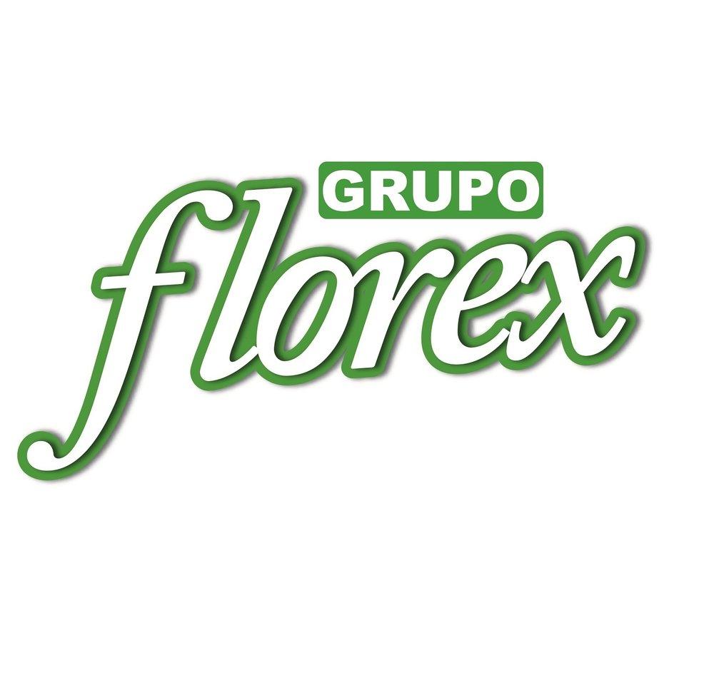 Logo Grupo Florex.jpg