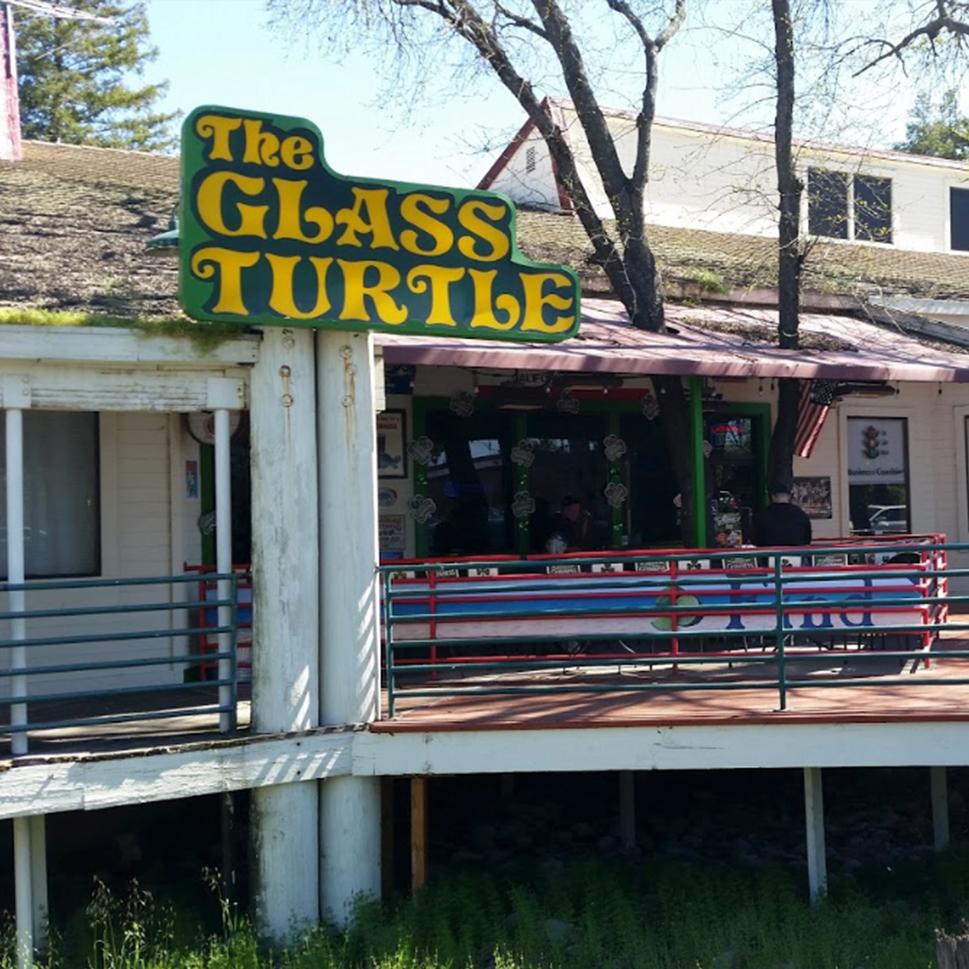 NSS_Partner Image_Glass Turtles.jpg