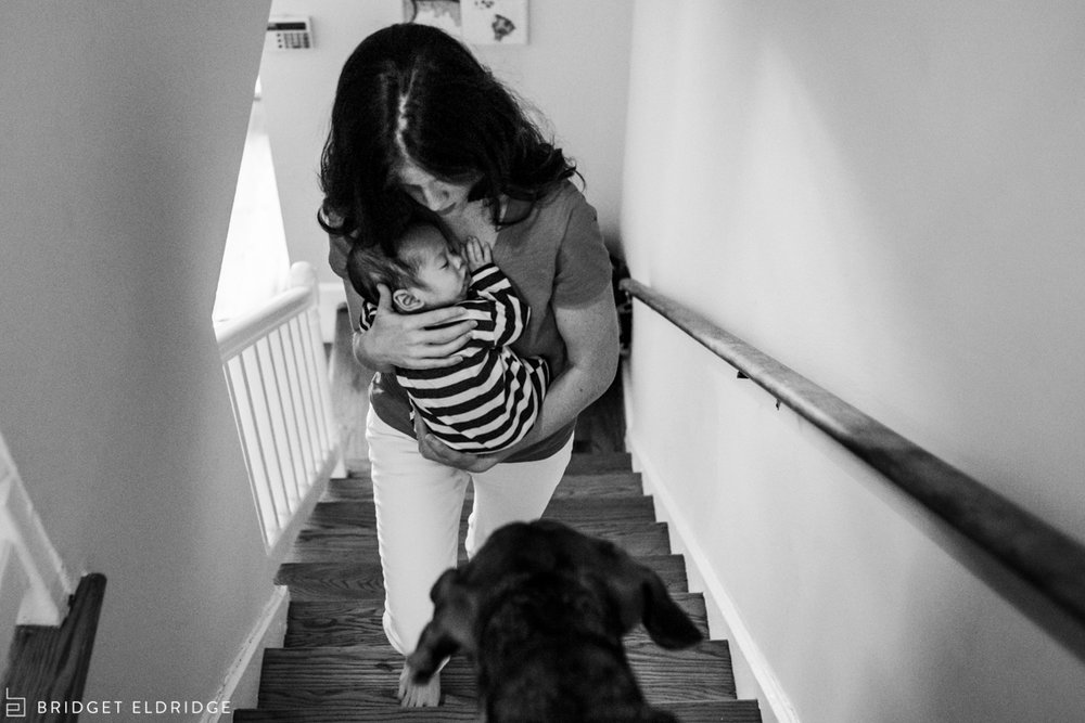 mom carries newborn son upstairs as dog watches on