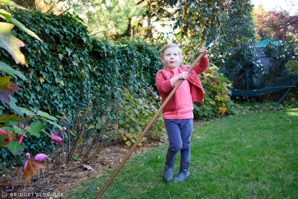 little girl tries to rake with a big rake