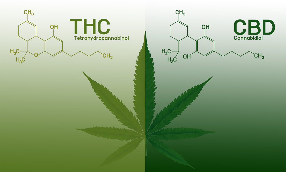Cannabis Dosing Explained - Article by Project CBD director, Martin A Lee.