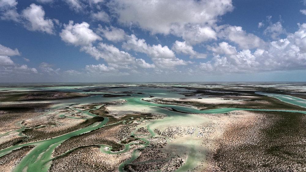 Andros Island - Bahamas - Photo by Michael Scholl - © Save Our Seas Foundation Copyright - DJI_0060_DxO.jpg