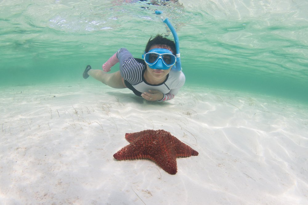 Guest Gabby with a red cushion sea star!