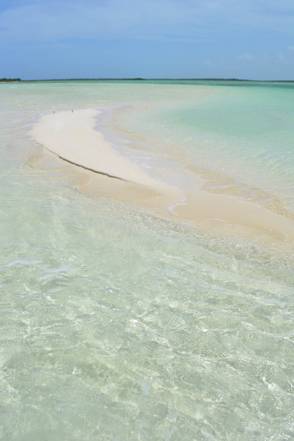 The dreamy waters of Andros, Bahamas
