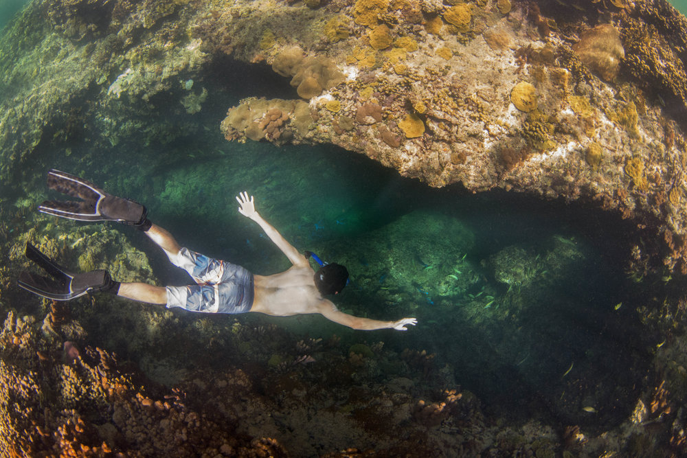 Expedition guest Ayden taking a dive into a salt water blue hole!