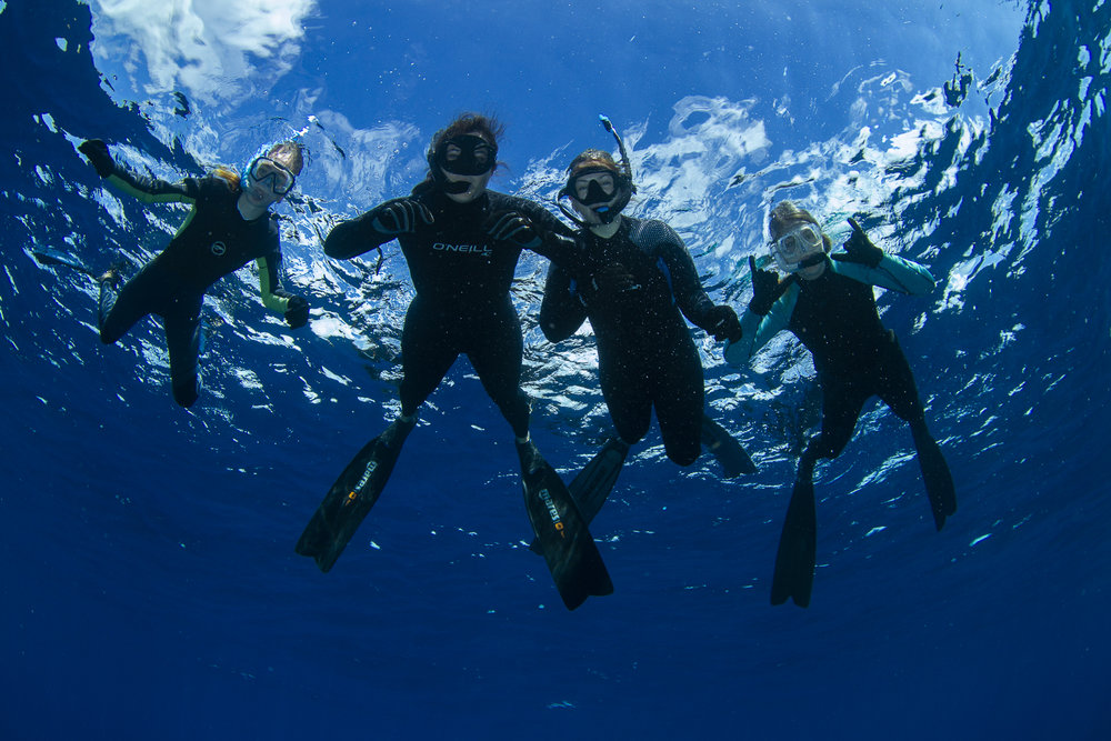 Expedition guests enjoying the eerie depths of the Tongue of the Ocean, some 2000 meters of deep blue!