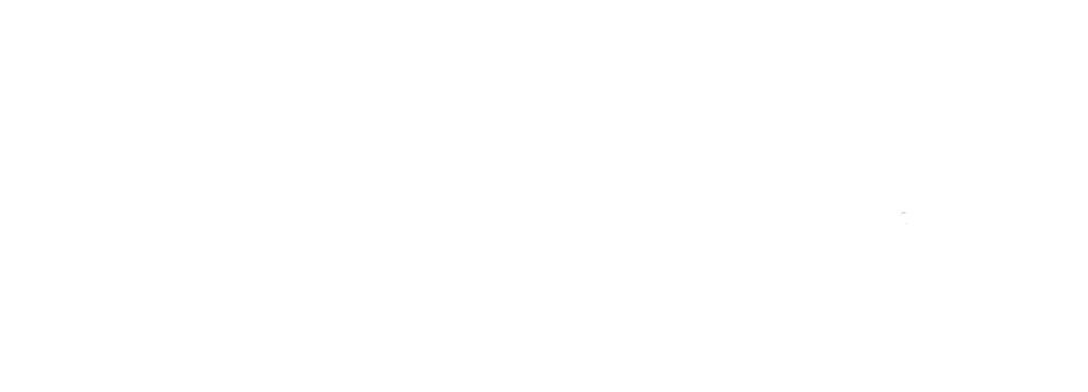 RFV_Logo-White.png