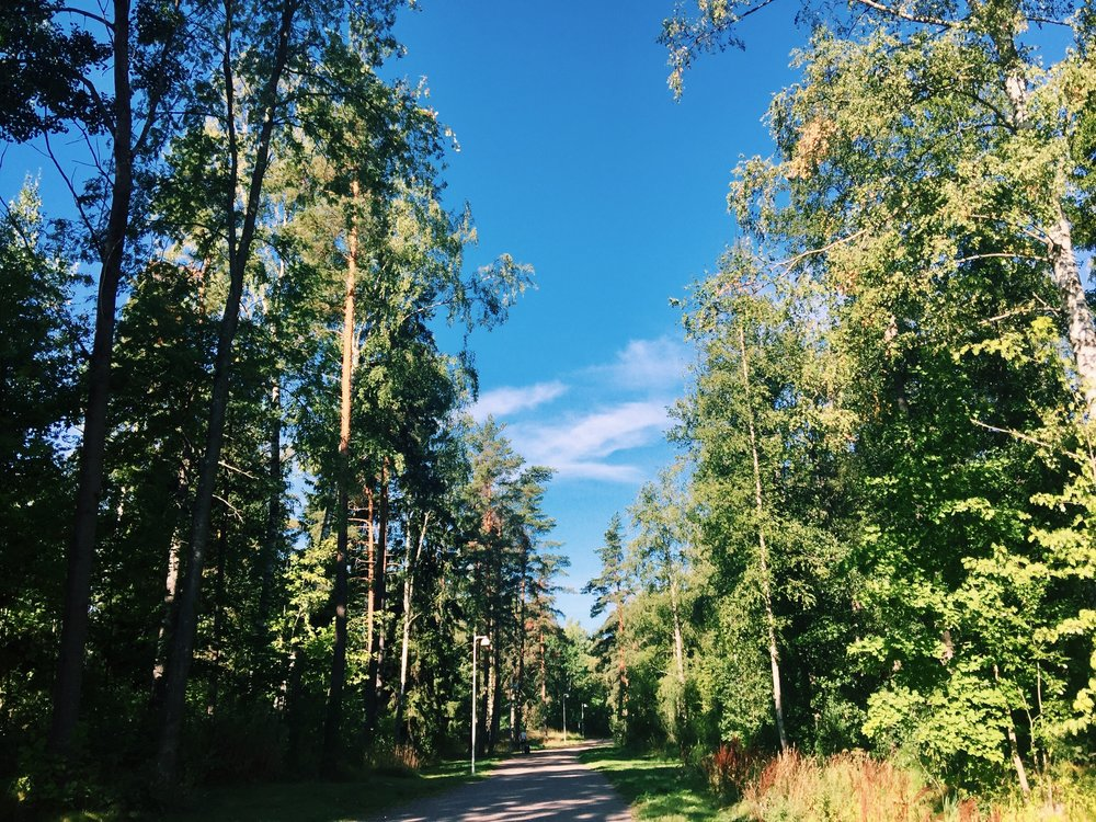 Forests mixed with residentials is a special feature of Finland, even in the capital city Helsinki.