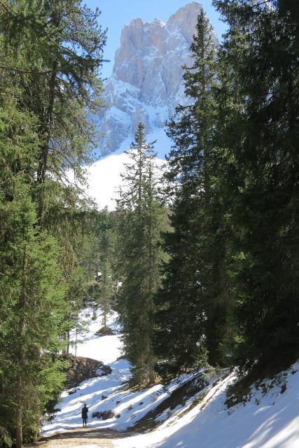 Dolomites+web.jpeg