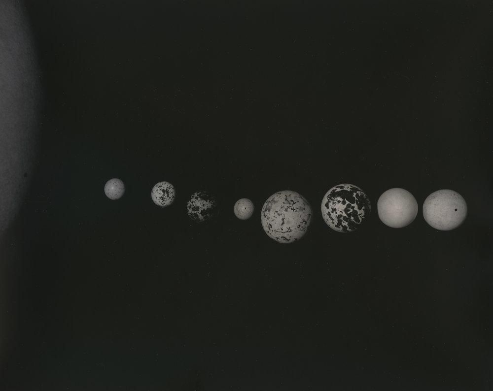 Claire Ren Space Eggs001.jpg