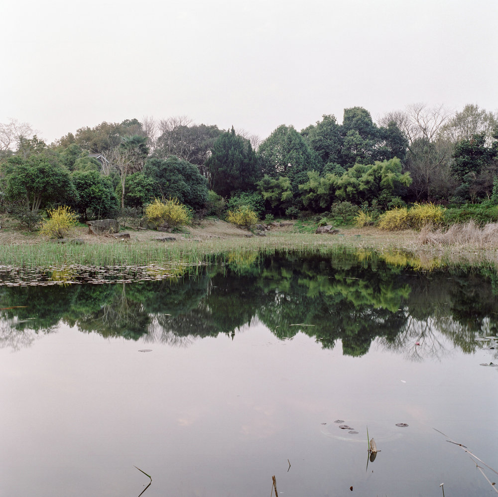 13_pond-2.jpg